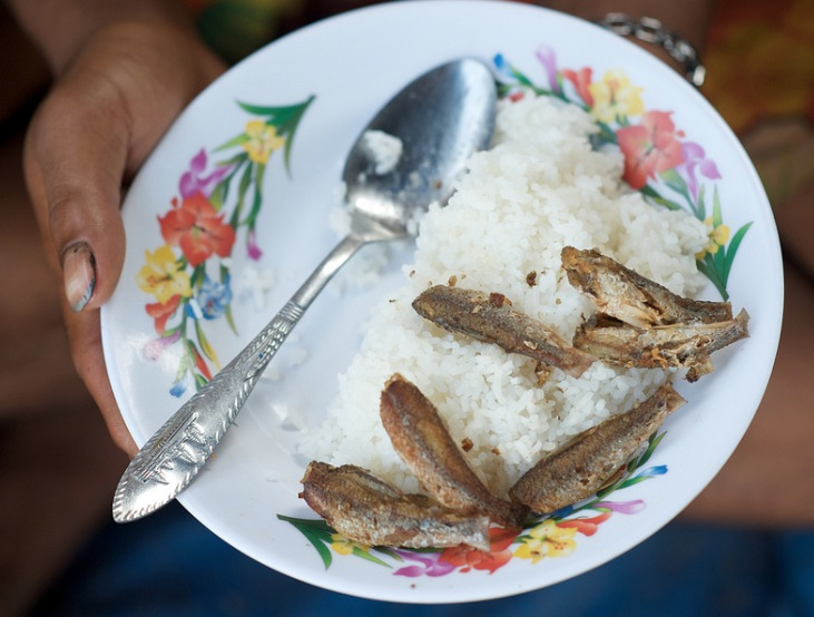 Fish and Rice; a daily staple for much of the world's poor. Photo credit Patrick Dugan