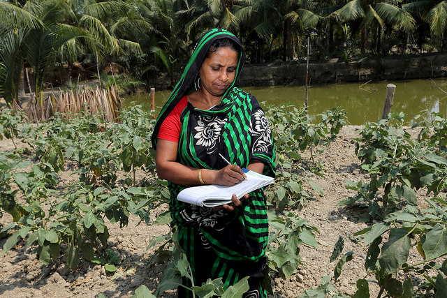 Woman taking notes at her farm in Khulna, Bangladesh.