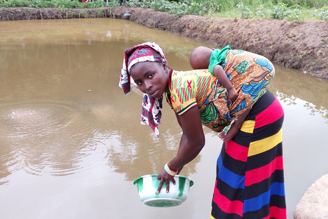 A woman feeding fish in Sierra Leone. Photo by Success Kamara