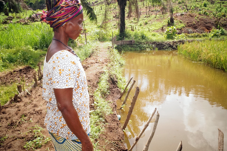 A project beneficiary surveying a project pond in Nokobar community, Sierra Leone. Photo by Monica Pasqualino.