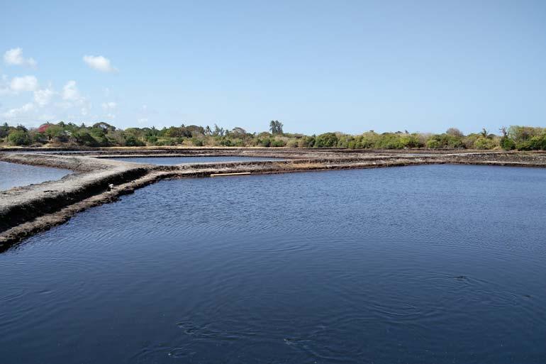aquaculture-tanzania