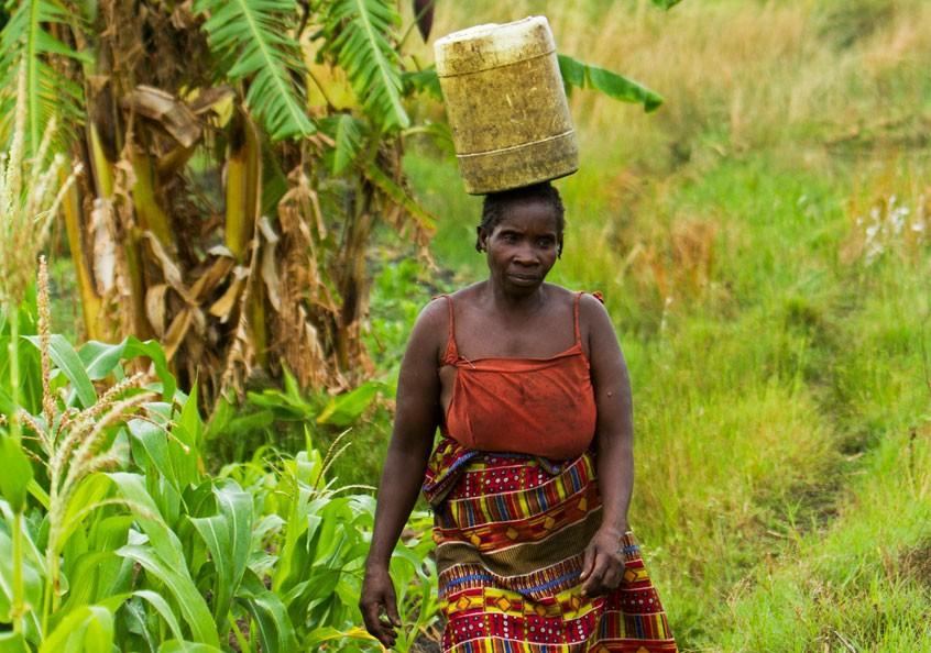Woman walking from the stream, Senanga, Western Zambia.