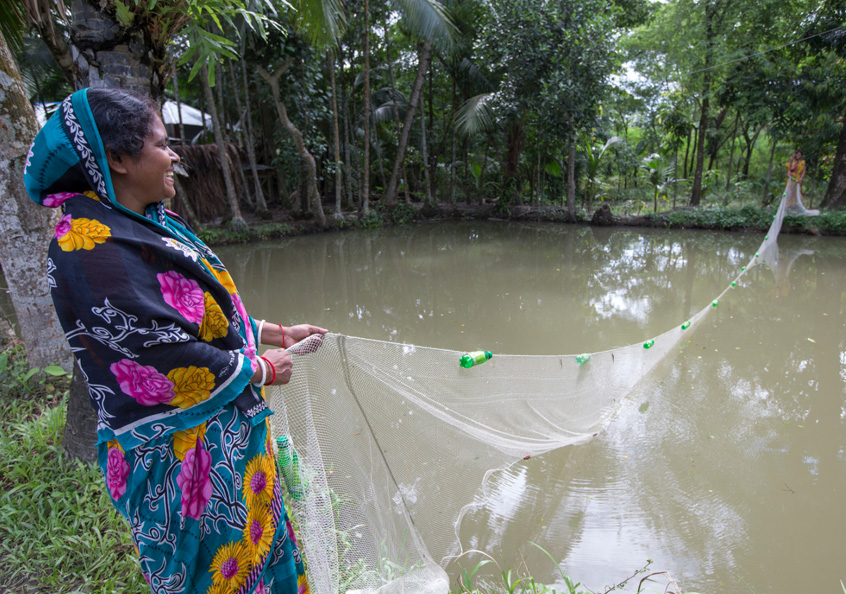 Women harvesting mola in Khulna, Bangladesh.