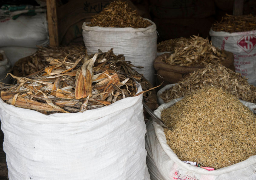 Dried fish in Bangladesh. Photo by Finn Thilsted, 2012.