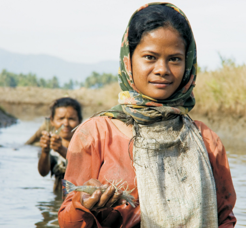 CARE / Shrimp farmer undertakes aquaculture in Indonesia