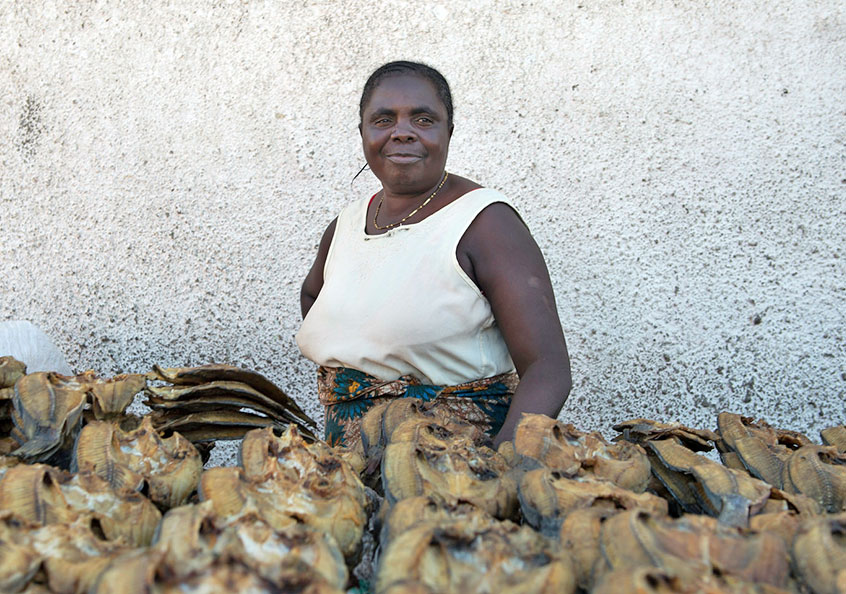 Fish retailer at Mongu Central Market, Zambia. Photo by Anna Fawcus.