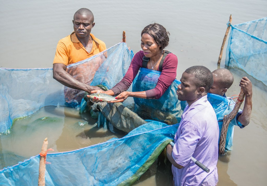 Fish farmers are central to aquaculture in Zambia.