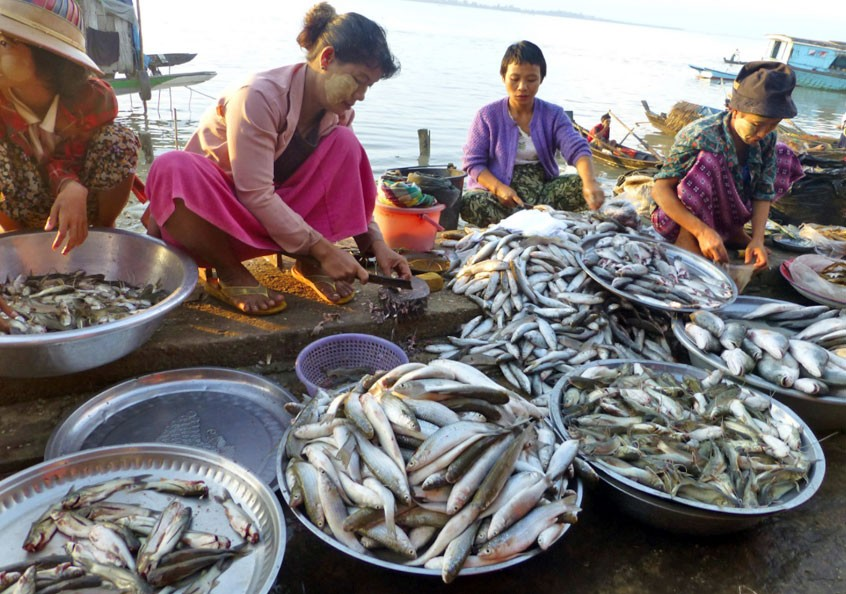 WorldFish 'pushes for progress' this International Women's Day