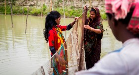 Mola and carp fish farming: A winning combination to boost nutrient intakes in Bangladesh and beyond