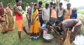 Carp intensification doubles production and increases profits for Indian farmers