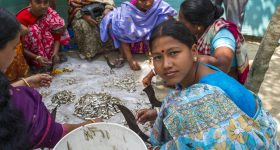 Aquatic foods are essential for sustainable healthy diets, says UN Nutrition