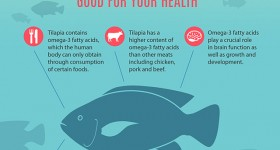 Tilapia: A nutritious, environmentally friendly fish