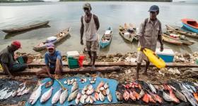 Catch shares versus sharing catch