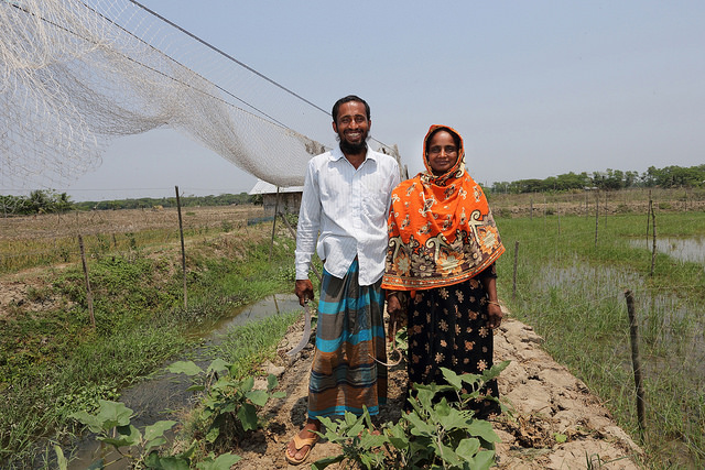 WorldFish gender research is benefiting fish farmers like Bashar Mollah and his wife in Khulna, Bangladesh.