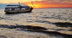 The hidden benefits of fisheries and aquaculture