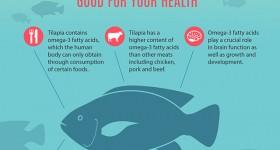 Tilapia: A nutritious, environmentally friendly fish